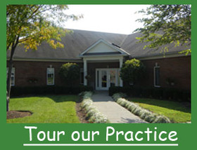 Tour our Practice